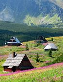 House in mountain - shelter in Tatras