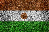 Niger Flag Color Grass Texture Background