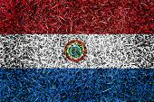 Paraguay Flag Color Grass Texture Background