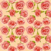 Summer Background With Delicate Roses And Leaves