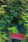stock photo of revelation  - A little red japanese bridge at a green forest - JPG