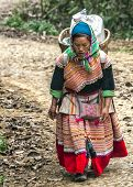 Hmong Woman With Loaded Basket On Her Back Comes Around The Bend In The Road.