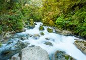 Beautiful Marian Creek feeds from the Lake Marian. The creek is located in a beautiful wild forests of Fiordland National Park, South island of New Zealand. long exposure