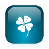 four-leaf clover blue glossy internet icon