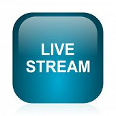 live stream blue glossy internet icon