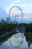 Singapore Flyer and Gardens by the bay