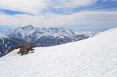 Majestic Alpine Arc