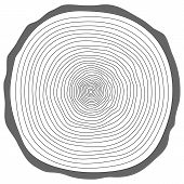 pic of cutting trees  - Tree rings - JPG
