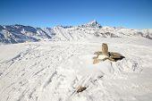 Italian Western Alps In Winter