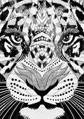 pic of psychedelic  - tiger psychedelic drawing - JPG