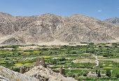 Green Village Among Himalayan Mountains