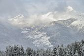 Alpine Landscape With Snowfall Forest And Village