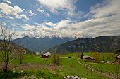 Idyllic Alpine Scene