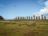 Row Of Moai And Bird