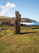 Moai With Row Behind