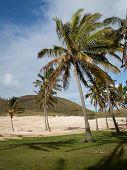 Beach Moai