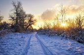 Beautiful Winter Landscape With Sunrise Sky, Road And Trees