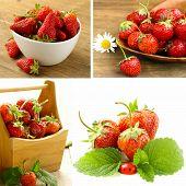 collage of ripe juicy organic berries strawberry