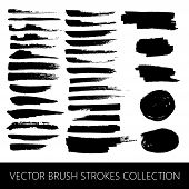vector collection of brush strokes and marker stains