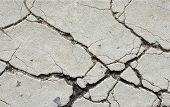 Closeup Road Cracks