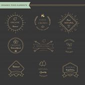 Set of vintage style elements for labels and badges  meat, fresh organic products,