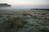 Stunning Foggy Autumn Fall Sunrise Landscape Over Frost Covered Field And Forest