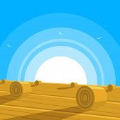 Field with bales of hay