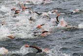 Triathlon, Many Swimming Men