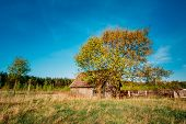 Russian Wooden Village House In Russia In Summer, Spring Sunny Day.