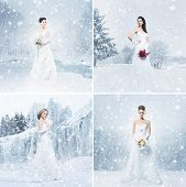 Young and beautiful brides over the winter backgrounds. Set collection.