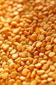 Yellow Dry Peas