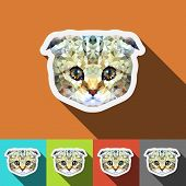 British Lop-eared Cat Vector Polygon Geometric