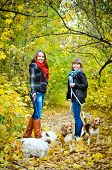stock photo of dog park  - women walking in the park with dogs - JPG