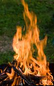 stock photo of bonfire  - Camping bonfire with flame and firewood in dark - JPG
