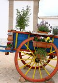 Flower Decorated Hand Cart