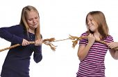 Two girls fighting over a rope isolated on a white background