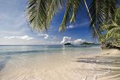 On the tropical beach. Siam bay. Province Trat. Koh Mak island. Kingdom Thailand
