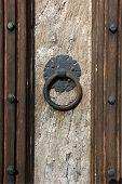 Door Panel And Knocker