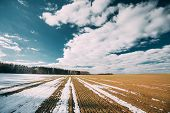 Spring Plowed Field Partly Covered Winter Melting Snow Ready For New Season. Ploughed Field In Early poster
