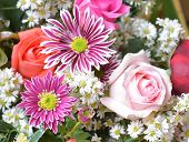 Chrysanthemum Flower And Rose Bouquet, Beautiful Floral Floor Texture, Flowery Pattern Background, R poster