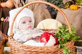 Cute Kid As A Chef Sitting In A Basket