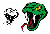 image of serpent  - Head of danger aggressive snake for mascot design - JPG