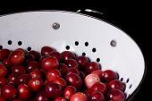 Fresh Cranberries In Colander