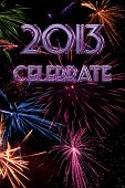 2013 Celebrate Vertical