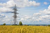 Electrical Powerlines And Wheat Field In Summer Day