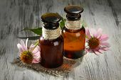 Medicine bottles with purple echinacea flowers on wooden table