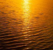 Gold sunset water texture