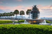 Charleston South Carolina-Ananas-Brunnen im historischen Waterfront Park