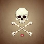Human Skull and Bones on Old Paper Background.