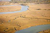 Aerial View Of Salt Marsh